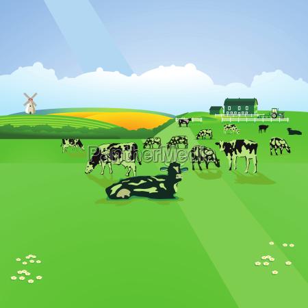 food aliment environment enviroment bucolic animal